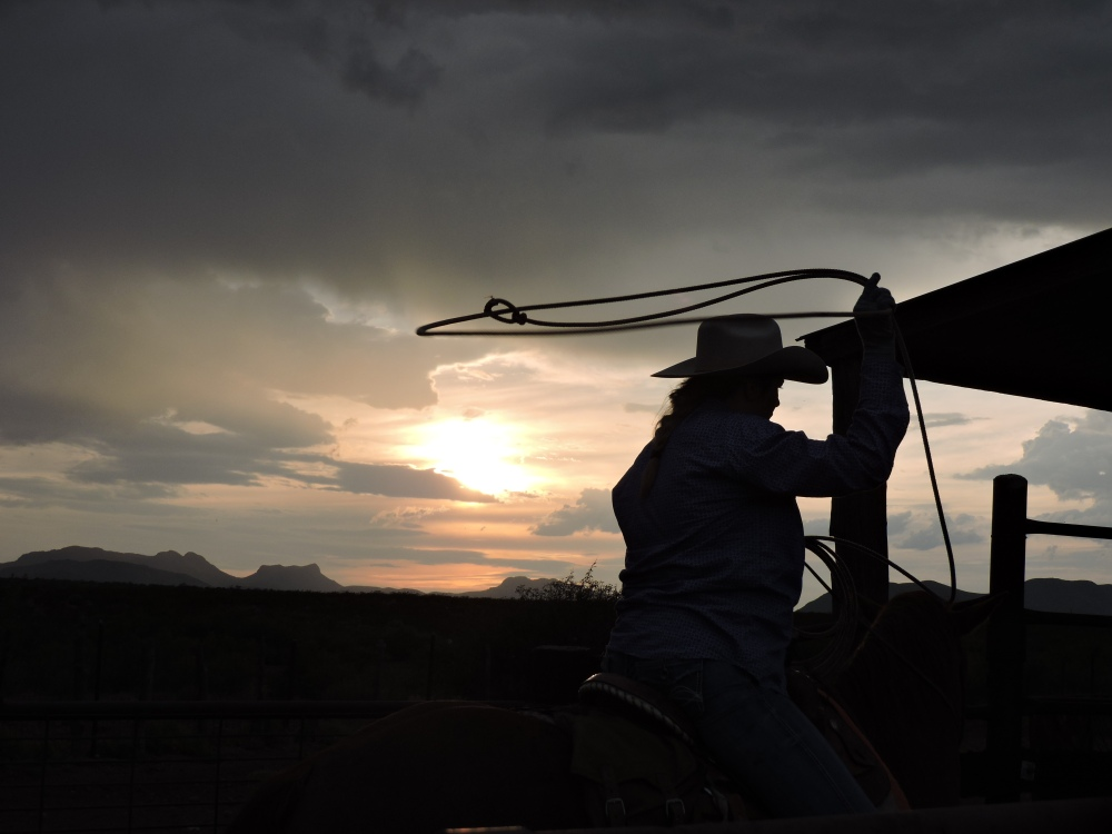 Mackenzie roping a calf to brand at sunset