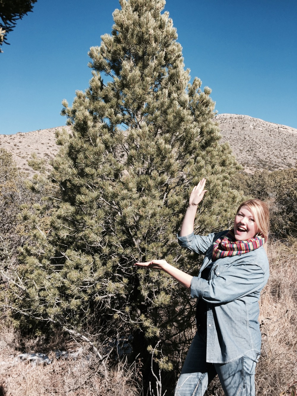 VannaWhite pose with tree