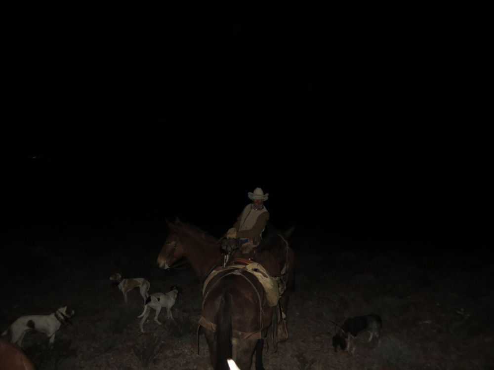 5 The long ride out.  Warner, wearing my hat on his head, leading my mule and his tired hounds.  Tough man. Tough day.